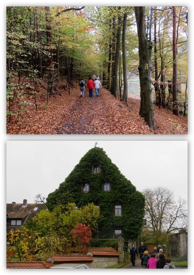 Herbstwanderung_2015_01